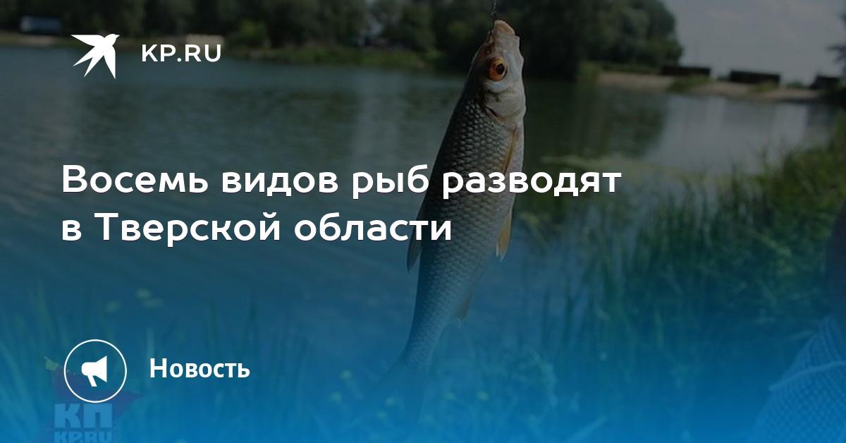 Первый секс был у рыб 375 млн