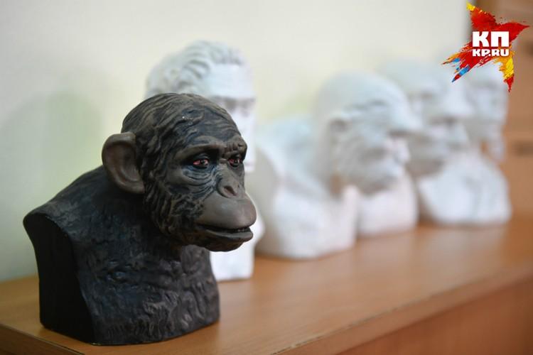 Нет никаких оснований считать, что эволюция закончилась на нас, считает ученый