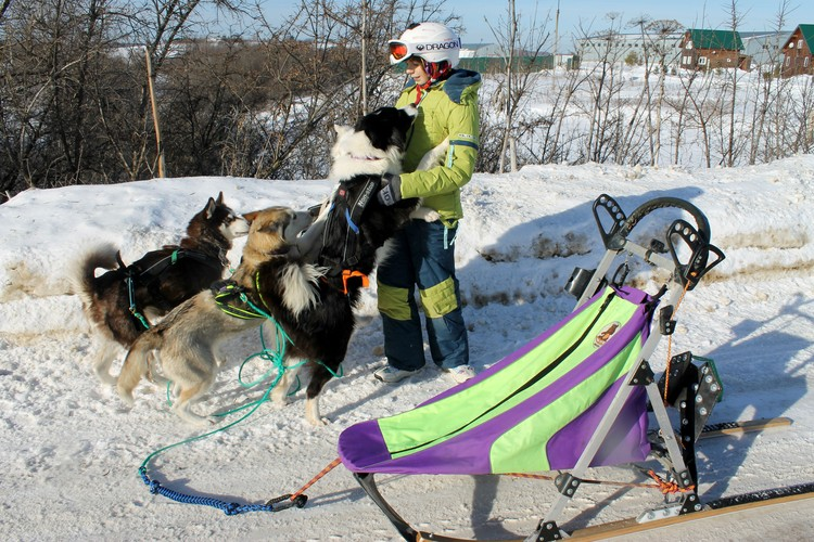 Вероника с собаками.