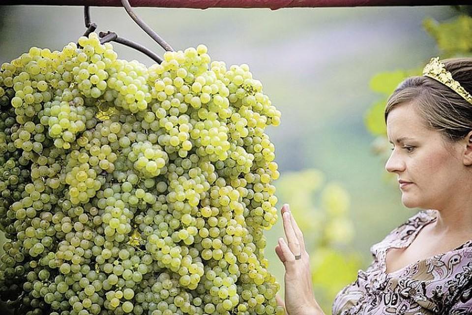 Так вот лучшее природное средство от отеков - виноград!