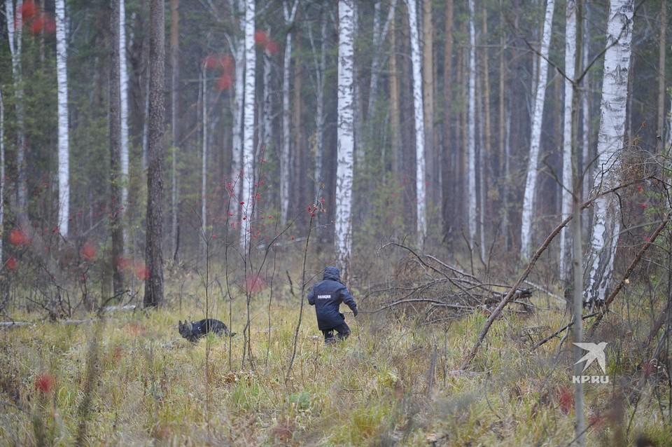 Поиски пропавшей Ксении Каторгиной под Екатеринбургом