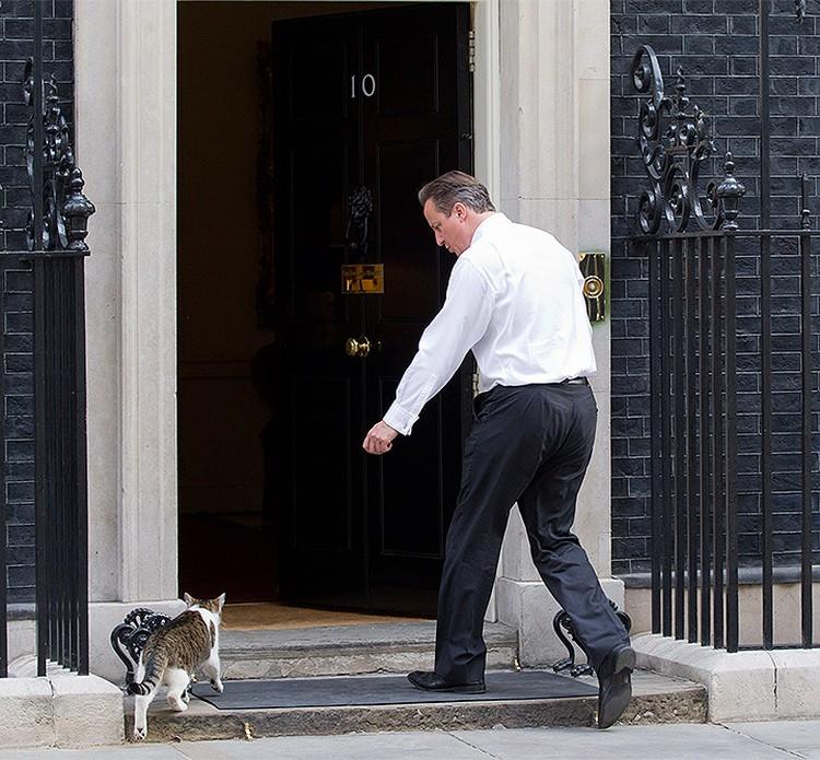 Ларри - официально государственный служащий. Перед ним открываются все двери.