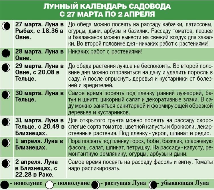 Лунный календарь садовода с 27 марта по 2 апреля
