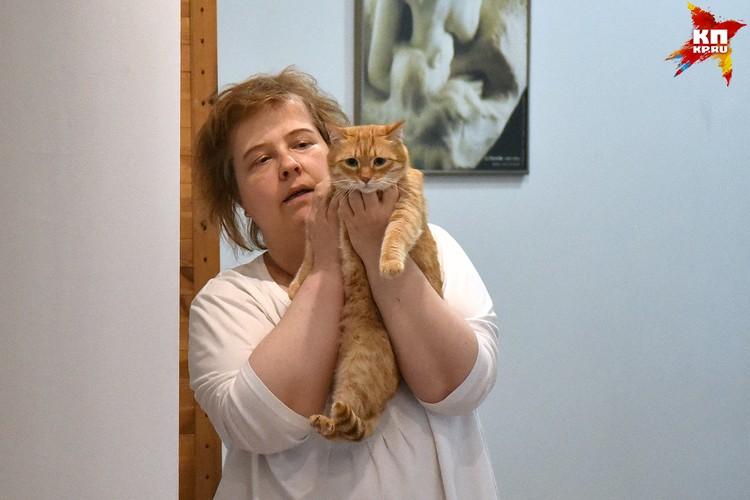 Кот Рыжик чужим не доверяет: сказывается прошлое, в котором кота избивали люди...