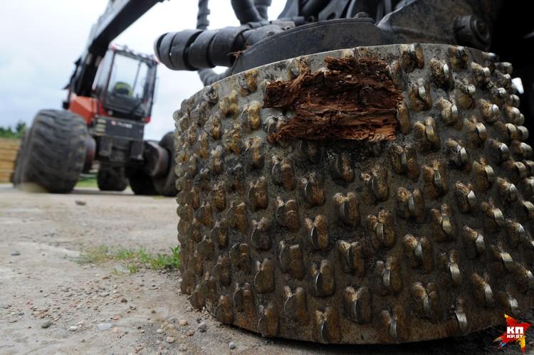 Харвестеры - многофункциональные комбайны: они спиливают дерево, на месте снимают с него кору и разрезают ствол на бревна.