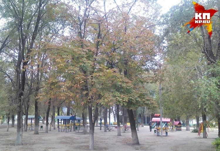 """Скорее всего, парк """"50-лет Октября"""" продлят на территорию парка аттракционов."""