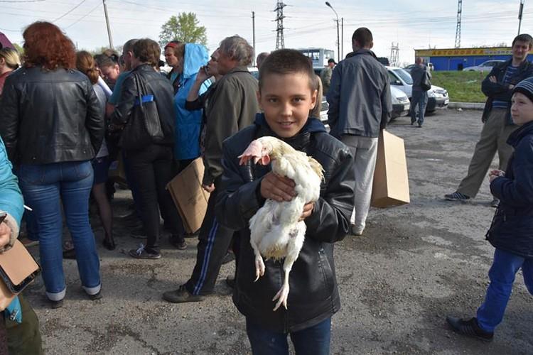 В город Юрга привезли кур для раздачи. Такие бесплатные «подарки от Тулеева» случались в населенных пунктах области чуть ли не каждый месяц. Фото: ako.ru
