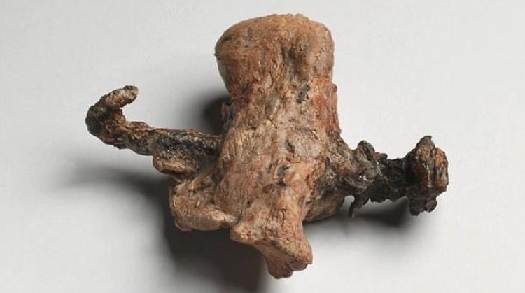 Модель пятки, пробитой гвоздем. Пятка от скелета римлянина.