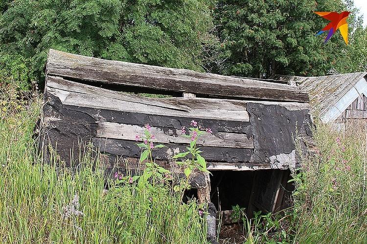 Тайный схорон, где Ваня прятал канистру с бензином и таблетки снотворного. ФОТО Анна МАТАСОВА