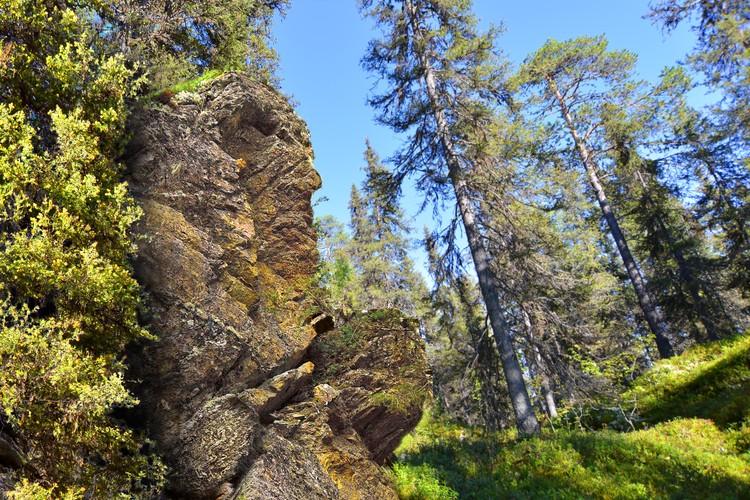 Этот памятник воину гиперборейцу под Ковдором по всей видимости самый древний на Земле. Автор фото: Александр ШВОРНЕВ