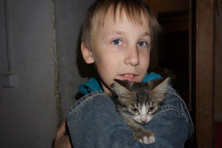 Сашкин друг - котенок по имени Зебра.