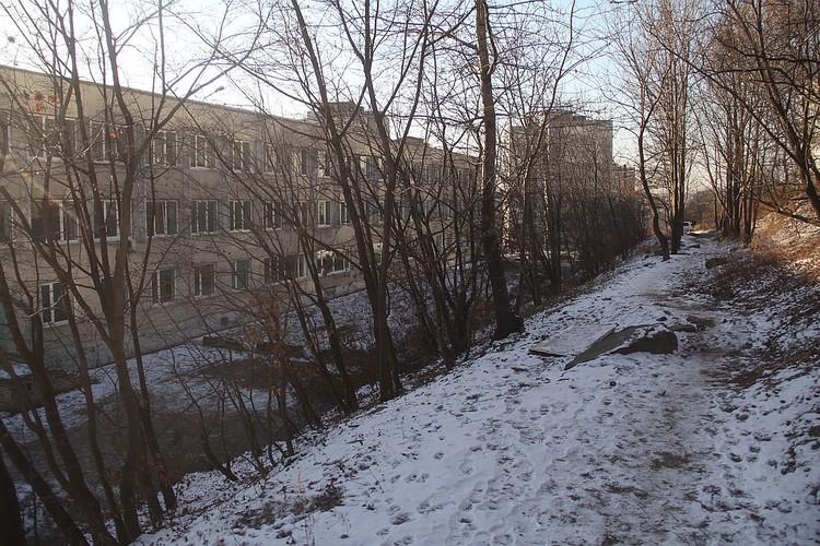 Тропинка к дому по адресу Адмирала Кузнецова, 90