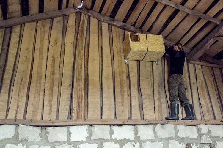 В таких домиках с удовольствием селятся сипухи. Фото: АПБ