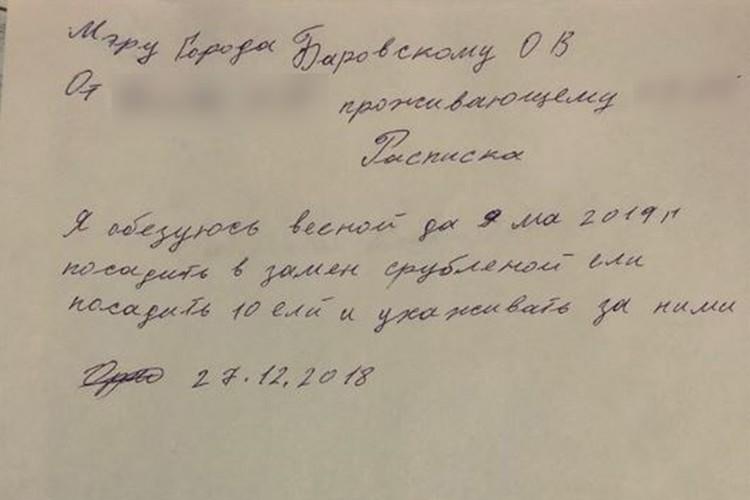 Фото: пресс-служба мэрии Саянска.