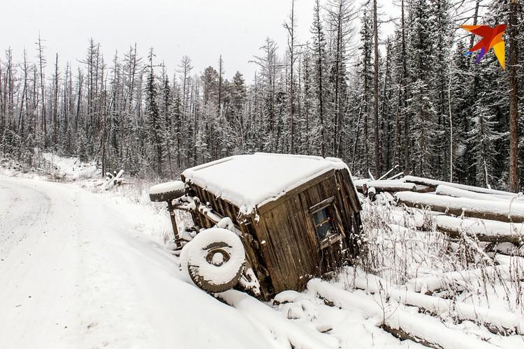 Опрокинувшийся деревянный вагончик, рядом с гниющим брошенным кругляком.