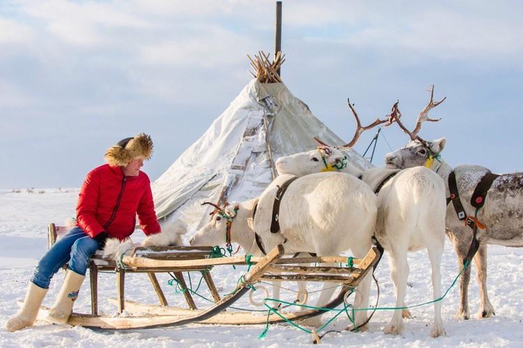 «Передачи о России у нас получаются лучше», – считает Алла. На фото: съемки в Ненецком автономном округе.