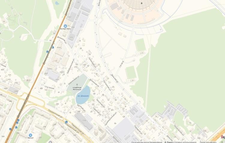 Дворец расположится на улице Демократической рядом с озером, которое на карте отмечено как озеро Шишига
