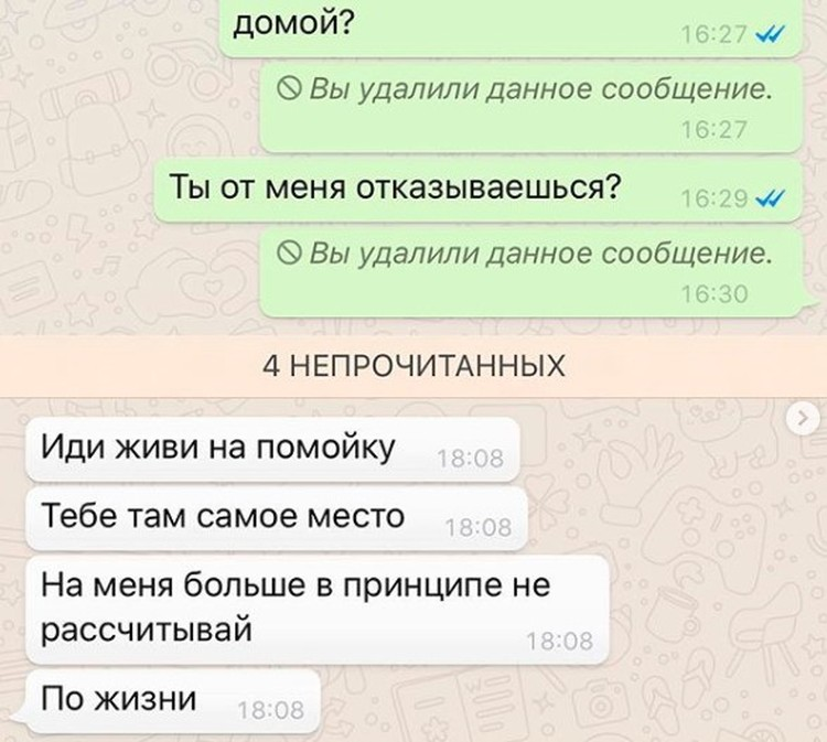 Фрагмент переписки Даны Борисовой с дочкой.