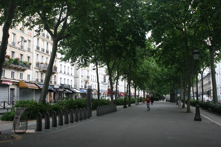 Если в Париже и защищают деревья от вредителей и ожогов, то делают это незаметно. Природа радует всех первозданной красотой.