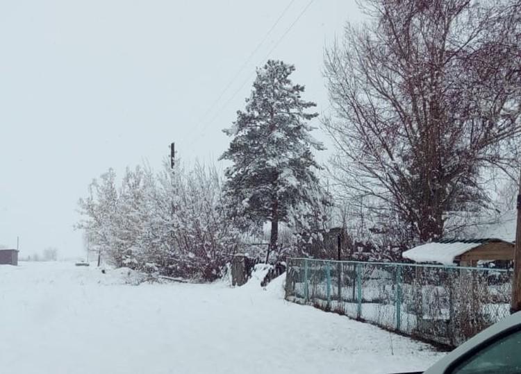 Топчихинский райцентр в снежной стихии/Фото: Максим Путилин