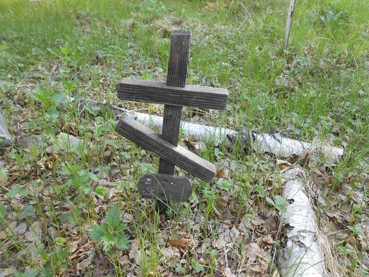 Часть животных похоронена под крестами, некоторые из которых явно православные.