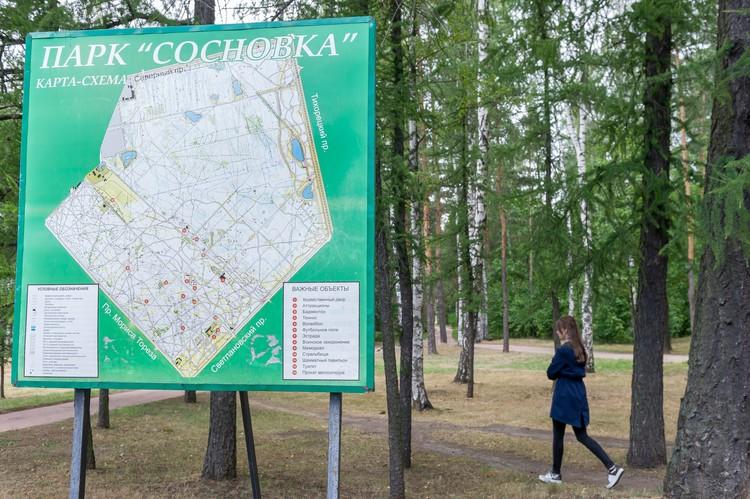 Парк Сосновка – популярное место среди жителей Выборгского и Калининского районов.