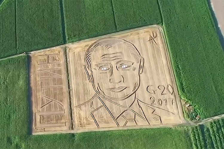 В 2017 году итальянский фермер Дарио Гамбарин создал огромный портрет Владимира Путина на поле