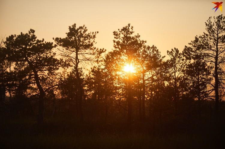 Рассветы на Ельне бывают необычайно красивыми.