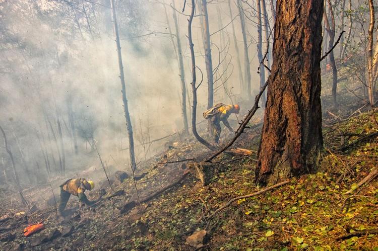 Фото: Лесопожарный центр