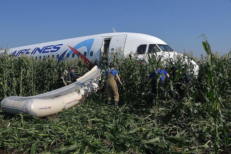 Самолет, летевший в Симферополь, экстренно сел в поле.