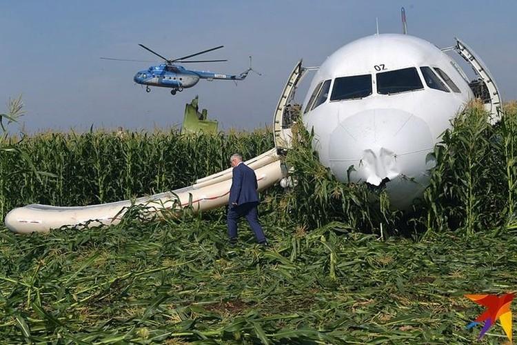 Пилоты смогли посадить судно посреди кукурузного поля с минимальными повреждениями