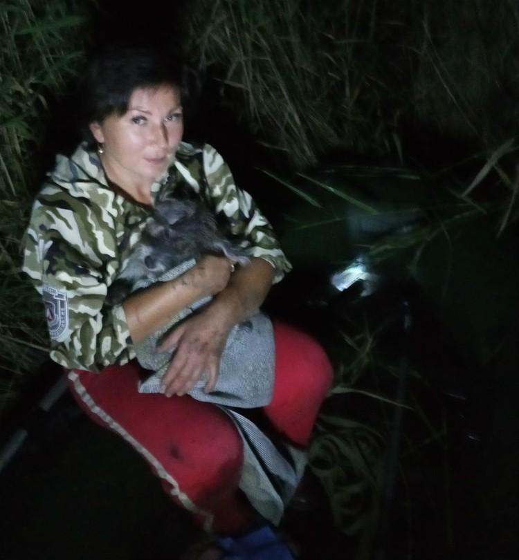 Спасательная операция развернулась в ночь на 18 августа в СНТ «Тракторосад-4». Фото: приют для животных «Друг».