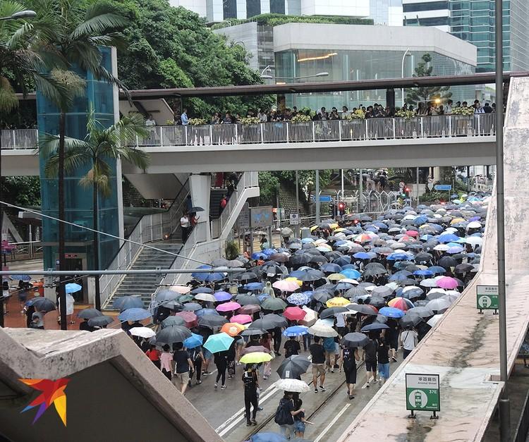 Демонстрация под дождем.