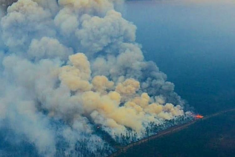 Этим летом тайга разгорелась так сильно, что дымом заволокло практически всю Сибирь. Фото: Лесопожарный центр