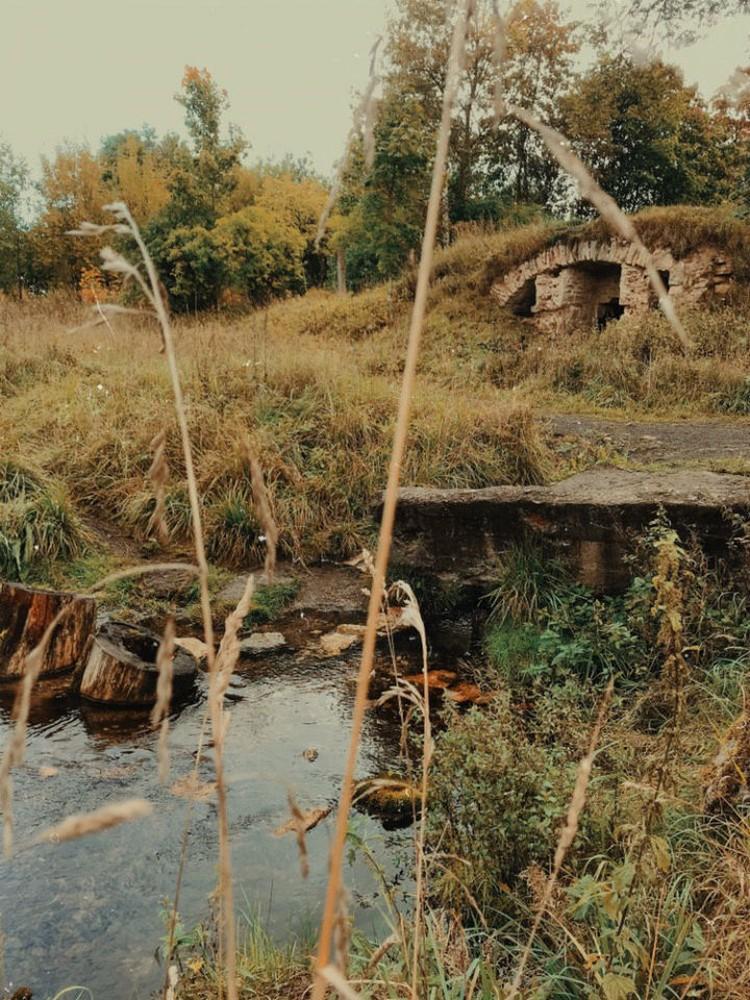 Родник находится прямо среди руин. Фото: Полина Исакова.