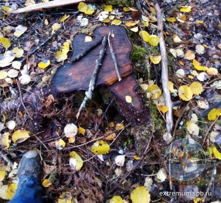 В лесу нашли стрелки из веток Фото: extremum.spb.ru