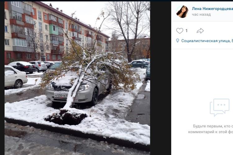 """Со страниц """"Инцидент Бийск"""""""