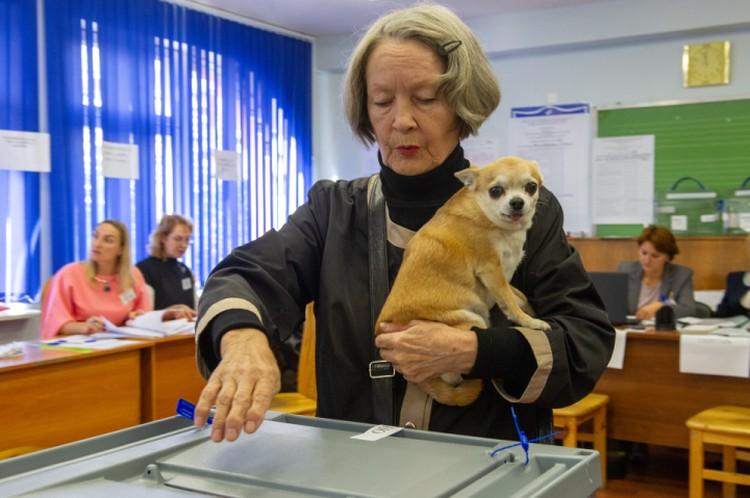На избирательные участки петербуржцы приходили и с детьми, и с домашними питомцами.