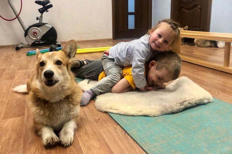 """Собаки становятся для детей настоящими друзьями - и помогают завести новые знакомства Фото: """"Дверь в лето"""""""