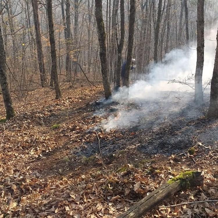 Пожары в Северском районе Фото:instagram.com/adamdzharim/