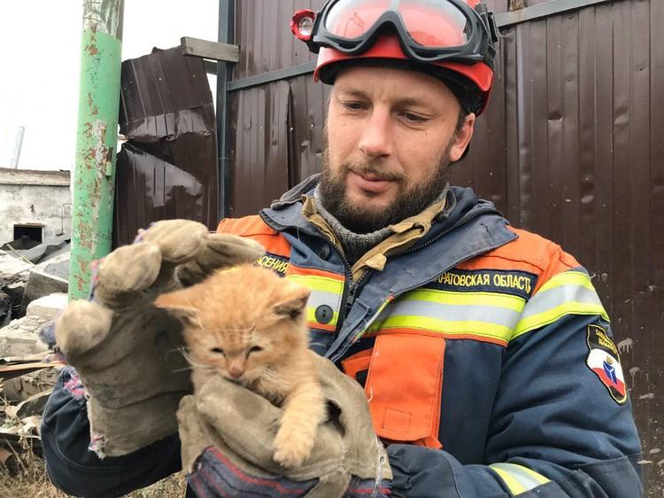 Удалось спасти котенка. Фото Саратовской областной службы спасения