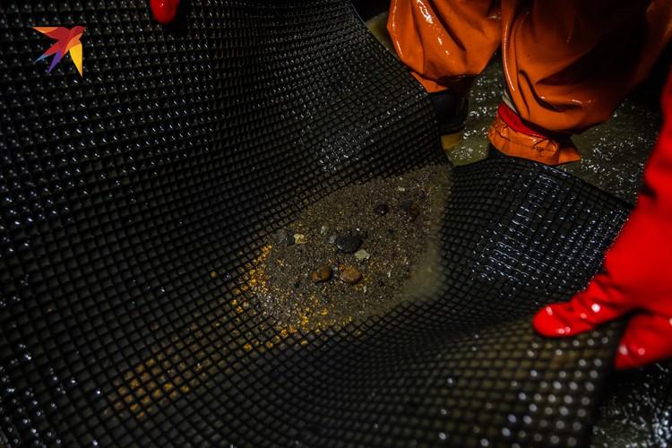 Раз в сутки специальная команда приезжает на «съем» - золото копится в приемном лотке.
