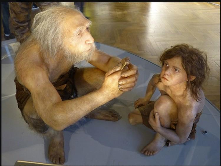 Неандертальцы еще и плохо плодились.