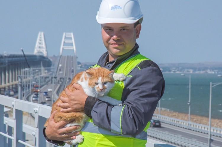 Подчиненные уважают хвостатого прораба. Фото: кот Мостик/VK