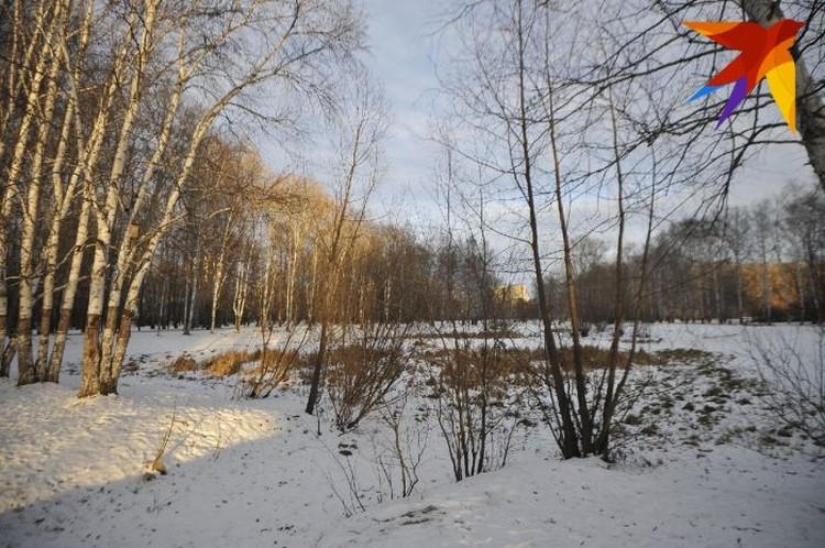 В этом парке Екатеринбурга предположительно и было найдено тело 9-летнего мальчика.