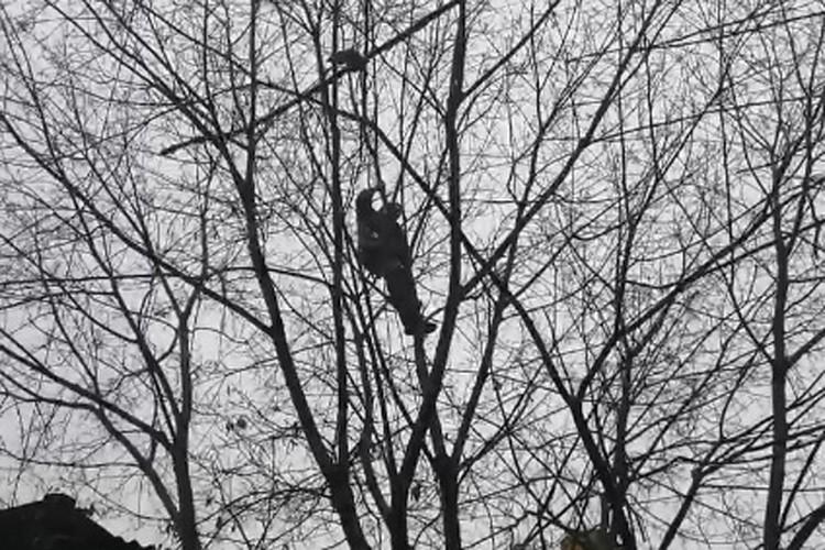 Вскоре после начала спасательной операции выяснилось, что волонтер боится высоты. ФОТО: Лариса Саплина.