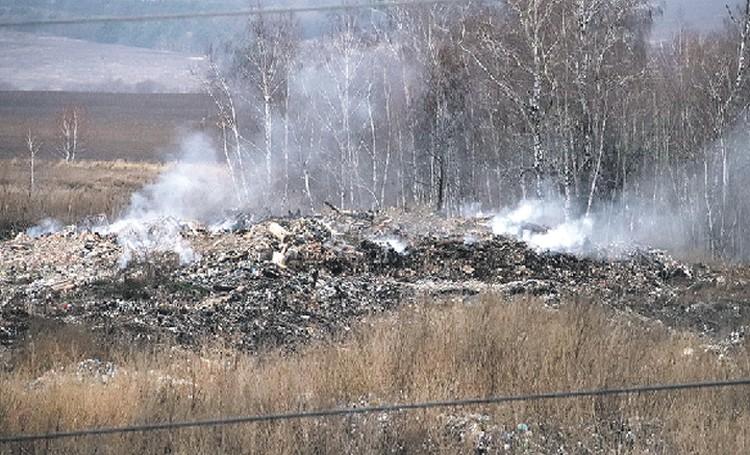 Завод ПВХ и постоянно тлеющая свалка наносят вред экологии региона.