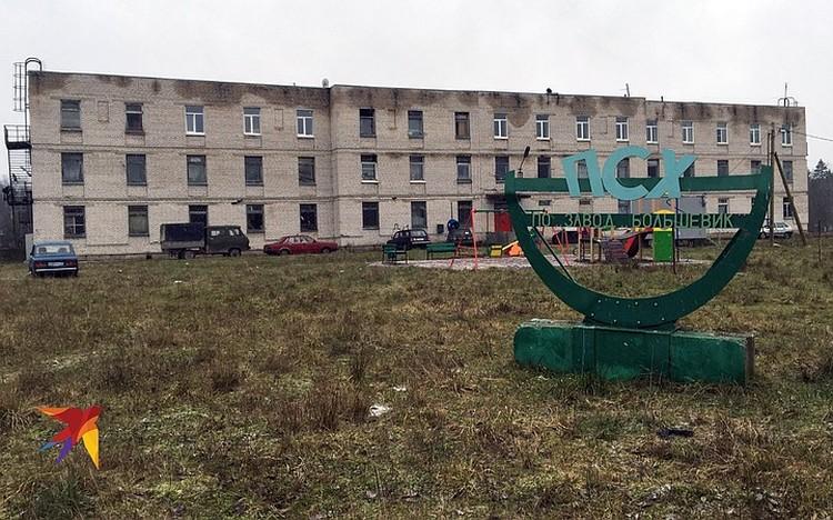 Раньше здесь находилось подсобное хозяйство завода «Большевик», а теперь сплошной криминал.