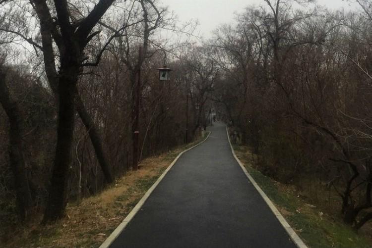 В парках пусто уже несколько дней. Фото: личный архив