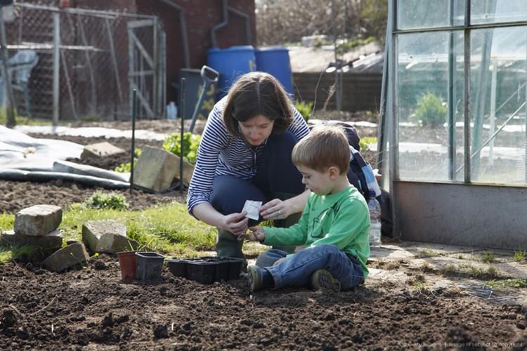 Сажать огороды уже можно начинать не по календарю, а,ориентируясь на температуру воздуха.